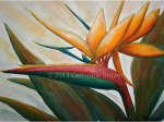 Painting of Bird of Paradise